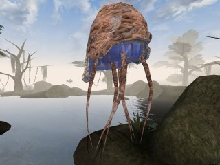 morrowind_small_netchbull-1